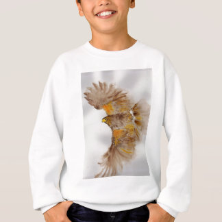 Harris Hawk, Bird of Prey Sweatshirt