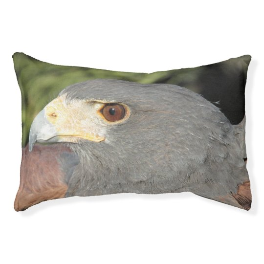 Harris Hawk Pet Bed