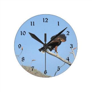 Harris Hawk Round Clock