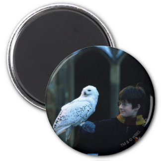 Harry and Hedwig 2 Magnets