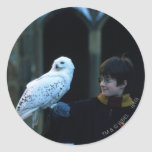 Harry and Hedwig 2 Round Sticker