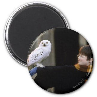 Harry and Hedwig 3 Magnets