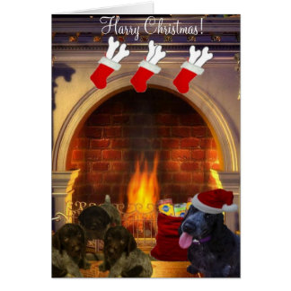 Harry Christmas Card