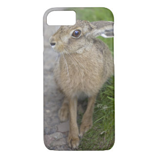 Harry Hare iPhone 8/7 Case