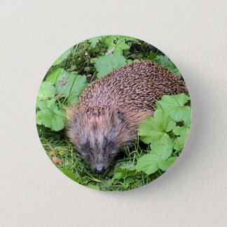 Harry Hedgehog 2 Inch Round Button