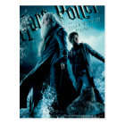Harry Potter and Dumbledore on rocks 1 Postcard