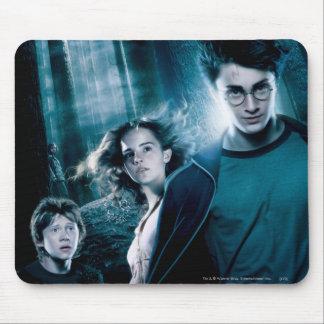 Harry Potter Ron Hermione dans la forêt Tapis De Souris