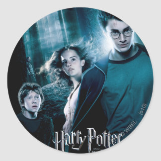 Harry Potter Ron Hermione In Forest Classic Round Sticker
