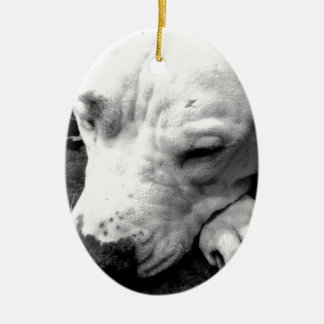 harry potter scar dog white pit bull ceramic oval ornament