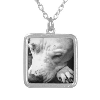 harry potter scar dog white pit bull silver plated necklace