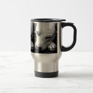 harry potter scar dog white pit bull travel mug