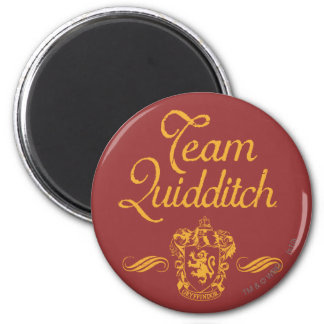 Harry Potter | Team QUIDDITCH™ Magnet