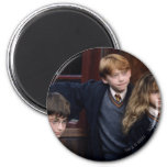 Harry, Ron, and Hermione Magnet