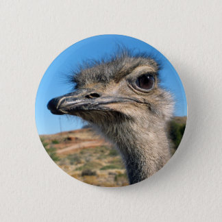Harry the Happy Ostrich 2 Inch Round Button
