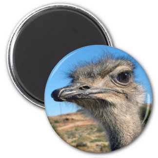 Harry the Happy Ostrich 2 Inch Round Magnet