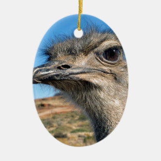 Harry the Happy Ostrich Ceramic Oval Ornament