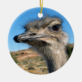 Harry the Happy Ostrich Round Ceramic Ornament