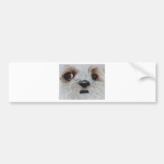 Harry the Shih Tzu Bumper Sticker