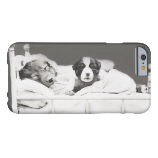 Harry Whittier Frees- Insomniac Puppy iphone6 Case