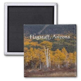 Hart  Prairie Flagstaff, Arizona Square Magnet