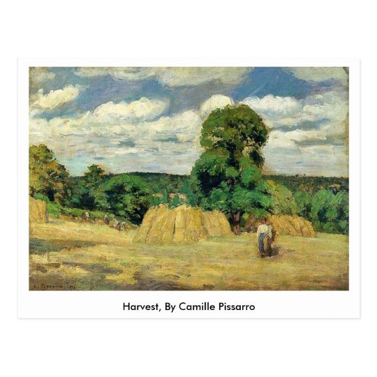 Harvest, By Camille Pissarro Postcard