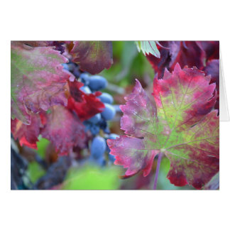 Harvest Grapes - Blank Note Card