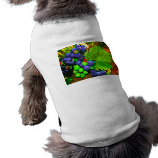 Harvest Grapes Dog Tee
