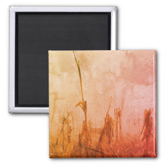 Harvest Magnet Abstract