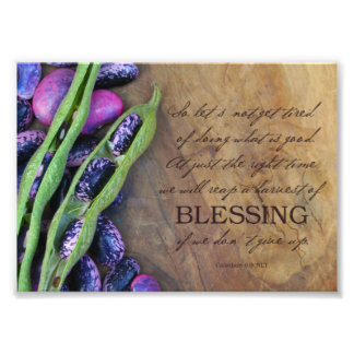Harvest Of Blessing Photo Print 7x5""