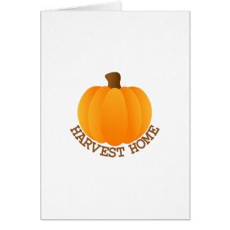 Harvest Pumpkin Greeting Card