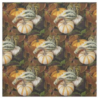Harvest Squash Photo Fabric