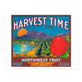 Harvest Time Apple Label - Yakima, WA Postcard