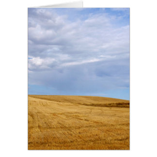 Harvested wheat field card