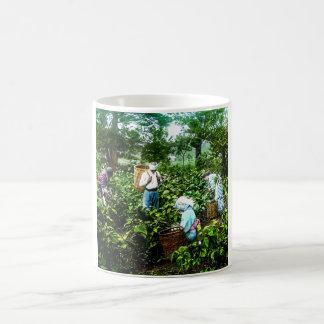 Harvesting Green Tea Leaves Old Japan Farmers Coffee Mug