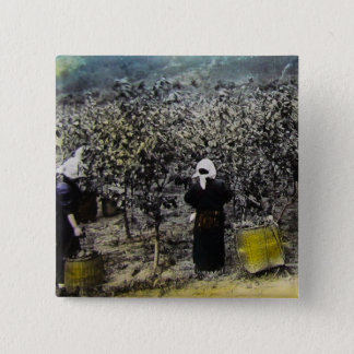 Harvesting Silk in Old Japan Vintage Japanese Farm 2 Inch Square Button