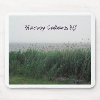 Harvey Cedars, NJ:  Bay with Green Grass/Reeds Mouse Pad
