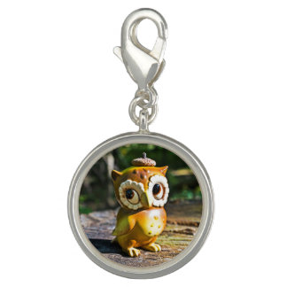 Harvey the Owl III Charms