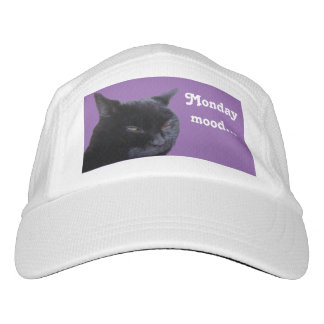 hat cat Monday mood by Billy Bernie