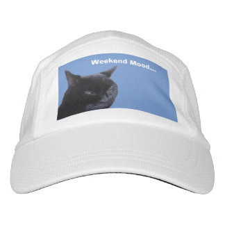Hat cat weekend mood