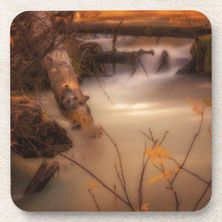 Hat Creek in Gold Coaster