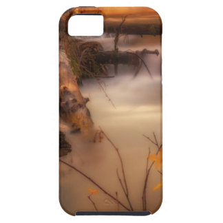 Hat Creek in Gold iPhone 5 Covers