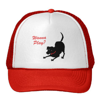Hat for Dog Lovers