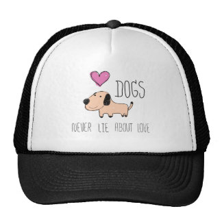 hat for love dog