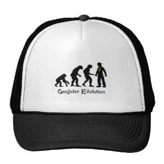 Hat gangster evolution