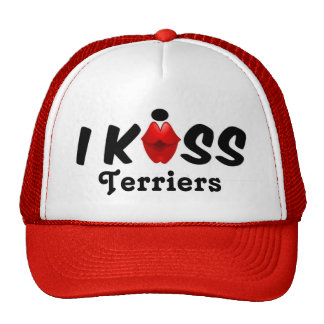 Hat Kiss I Kiss Terriers