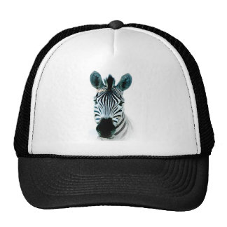 Hat with zebra head out of africa