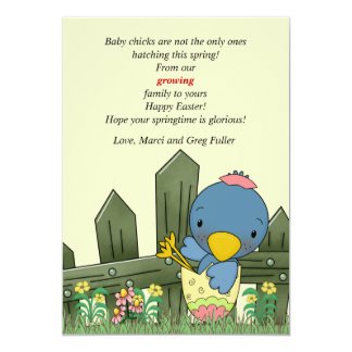 Hatchling Bird Pregnancy Announcement and Easter C