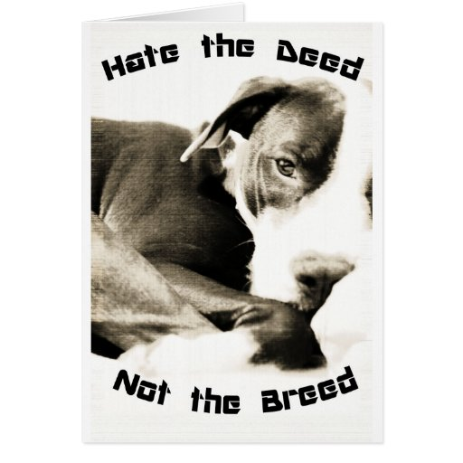 hate the deed not the breed pitbull greeting card