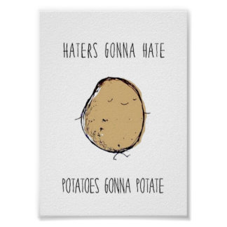 HAters GOnna Hate Poster Small
