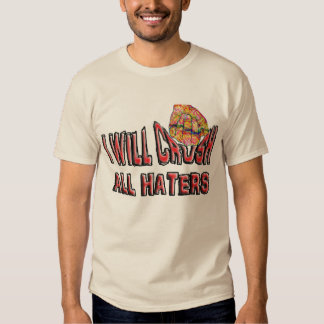 Haters motivate me to win. tshirt